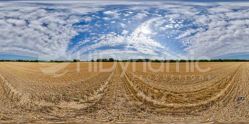 harvested wheat field-6608-02