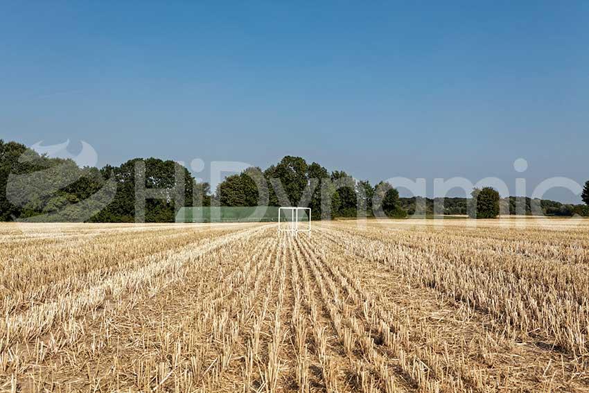 stubbel field landscape